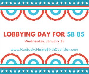 1/13 Lobbying Day